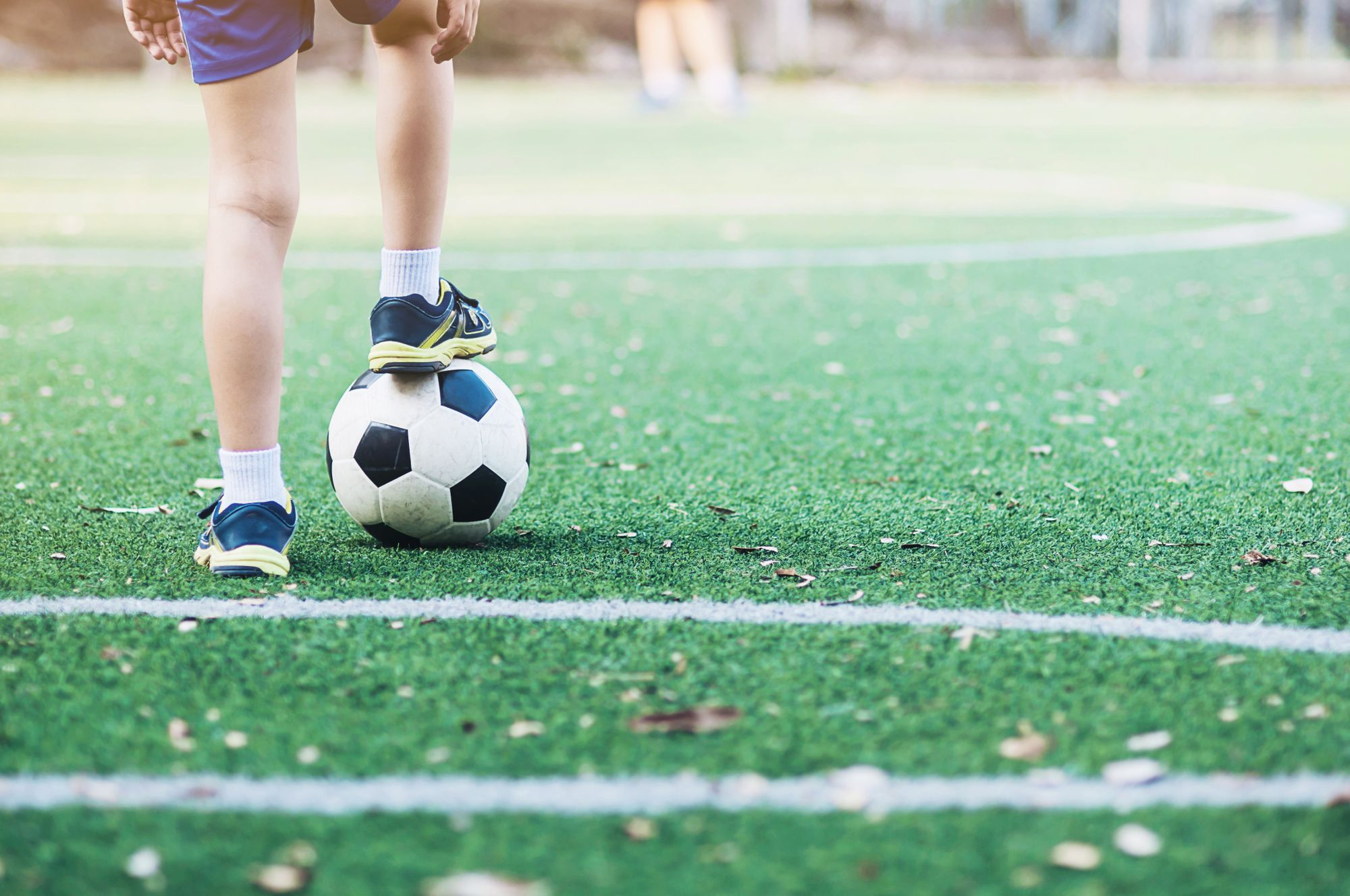 Top 10 Synthetic Grass Dealers In Mumbai
