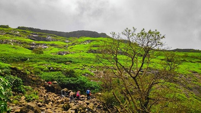 Forts in Maharashtra: Best places for Trekking