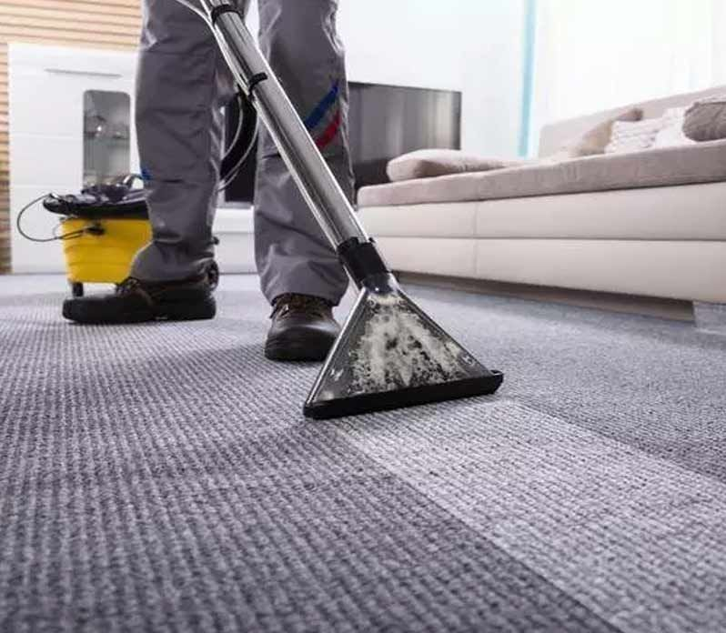 Top 10 Rugs & Mats Cleaning Company in Abbotsford