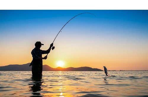 Sport Fishing and Angling in Goa