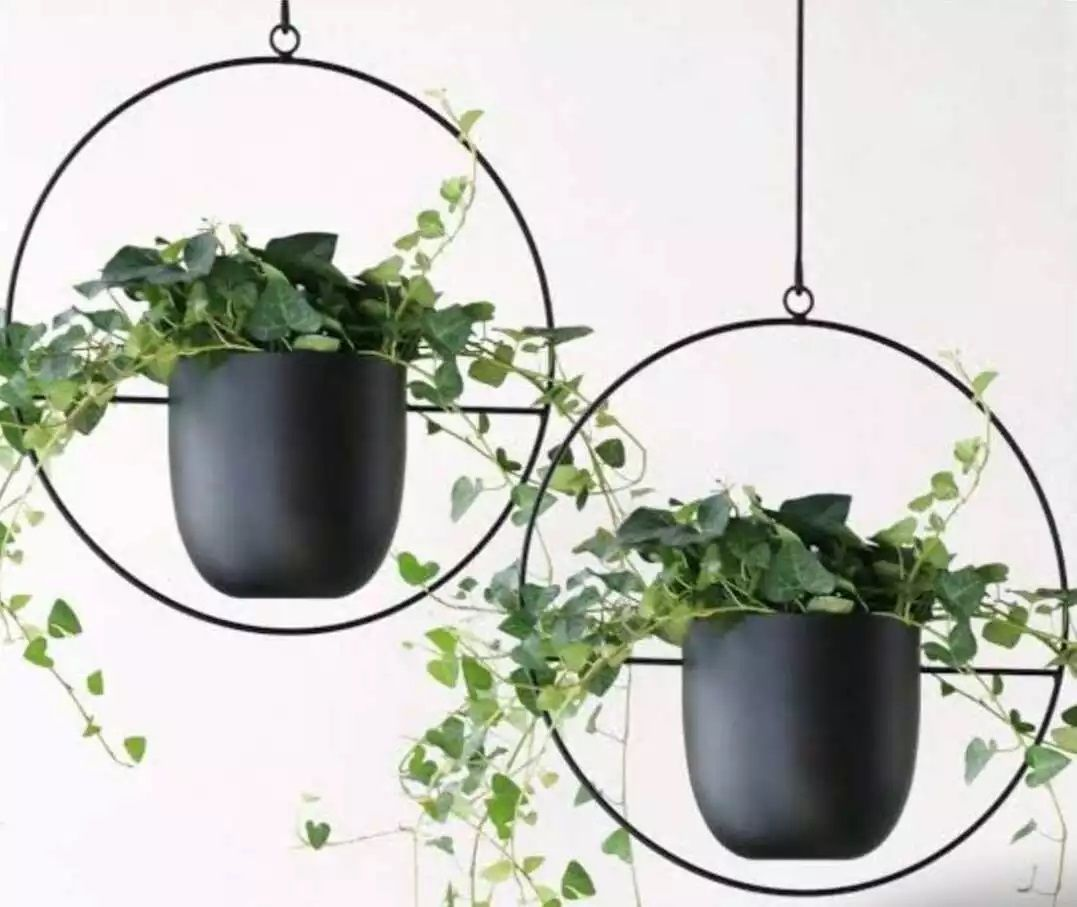 Get quality plant care products and indoor plants for your sweet home