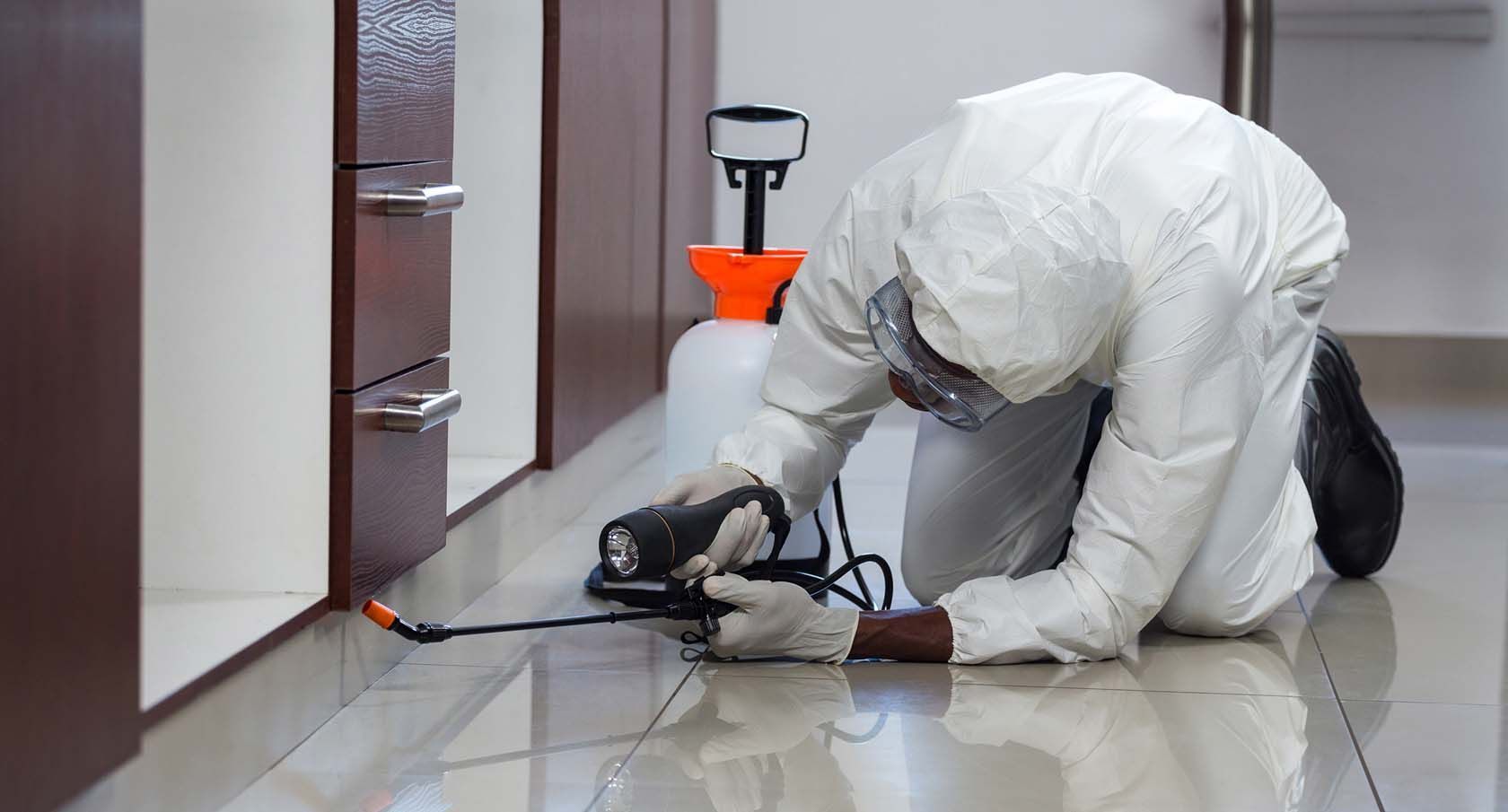 Top Pest Control Service In Mankhurd