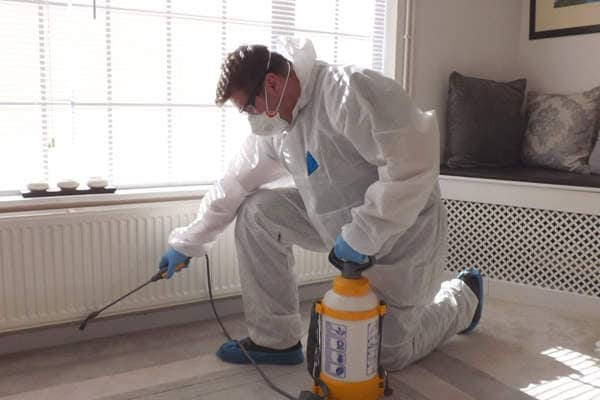 Top Pest Control Service In Kalwa