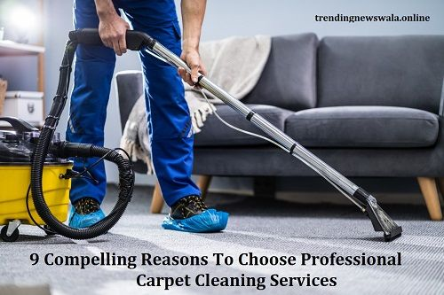 9 Compelling Reasons To Choose Professional Carpet Cleaning Services